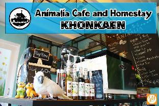 Animalia cafe and homestay แอนิมาเลีย คาเฟ่ แอนด์ โฮมสเตย์