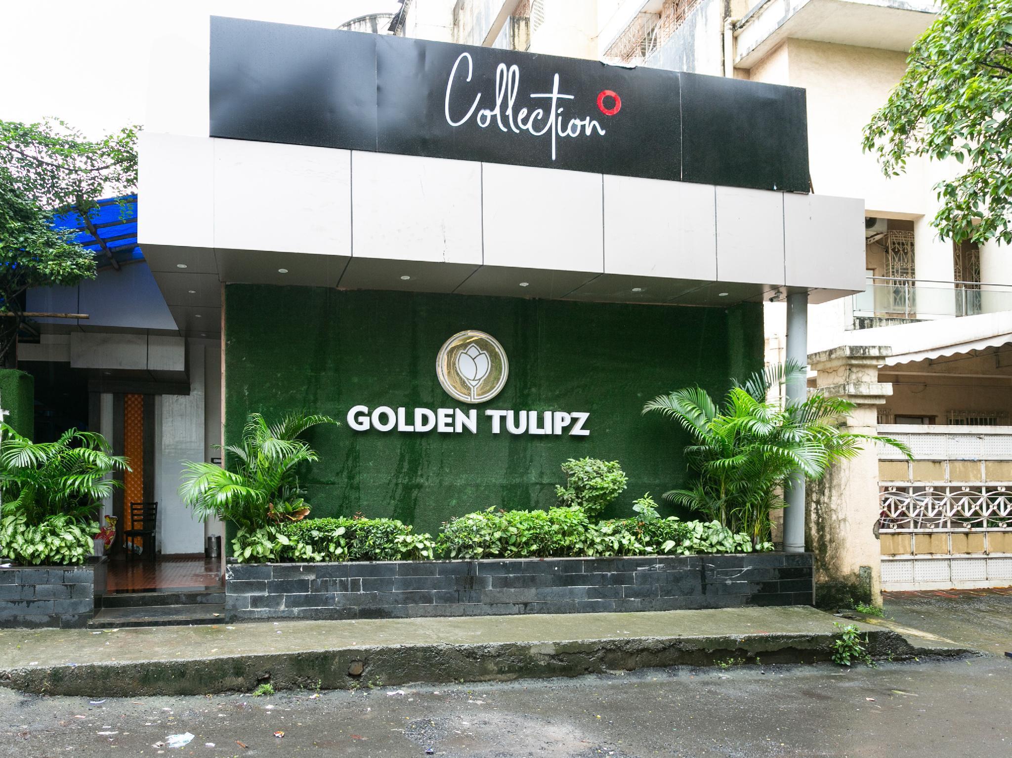 Collection O 47695 Golden Tulipz