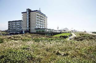 NH大西洋海牙酒店