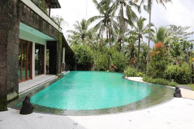 Room rice field view and swimming pool in Ubud