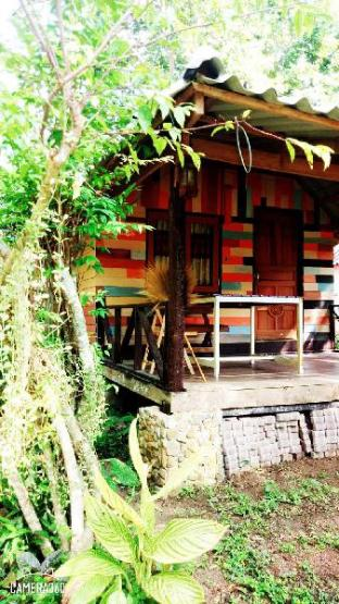 [カンタン]バンガロー(60m2)| 8ベッドルーム/8バスルーム Mayow bungalow koh mook Trang