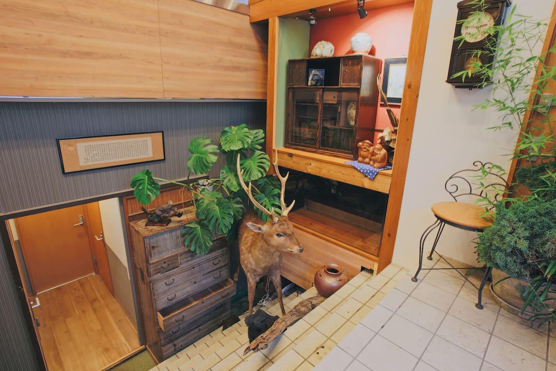 Tatami Hostel   7 Min Sta.   Up To 2ppl @daib12