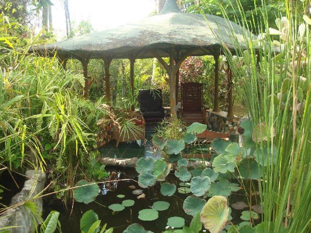The Romantic Coconut Tree Hut of Villa Arjuna