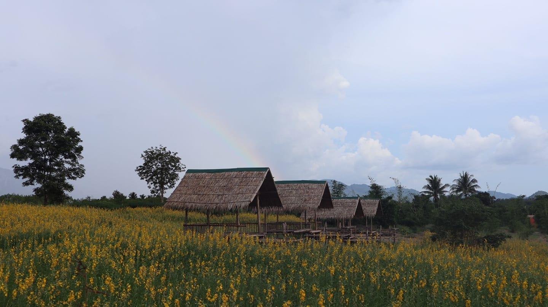 Baan Rai Chy Tung by P&Y Bungalow 1 สตูดิโอ บังกะโล 1 ห้องน้ำส่วนตัว ขนาด 27 ตร.ม. – ไทรโยค