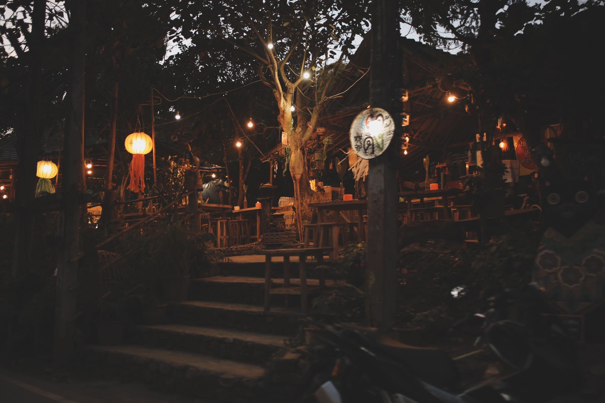 The Tree home  Mae Kampong 4 บังกะโล 1 ห้องนอน 1 ห้องน้ำส่วนตัว ขนาด 30 ตร.ม. – ดอยสะเก็ด