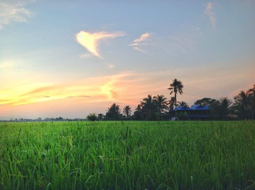 Epic Sunrise + Paddy Fields + Breakfast = BLISS