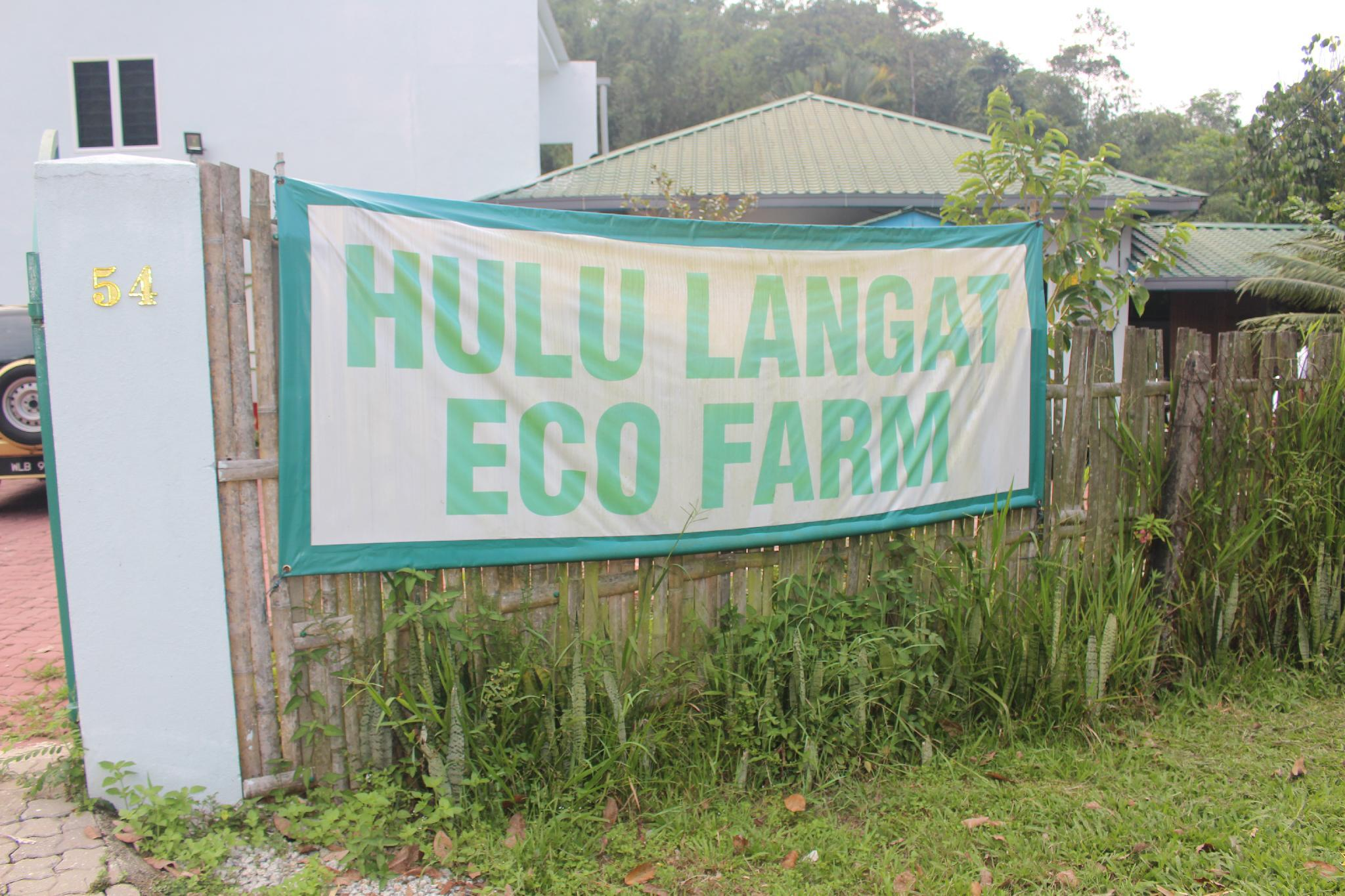 Hulu Langat Homestay Eco Farm