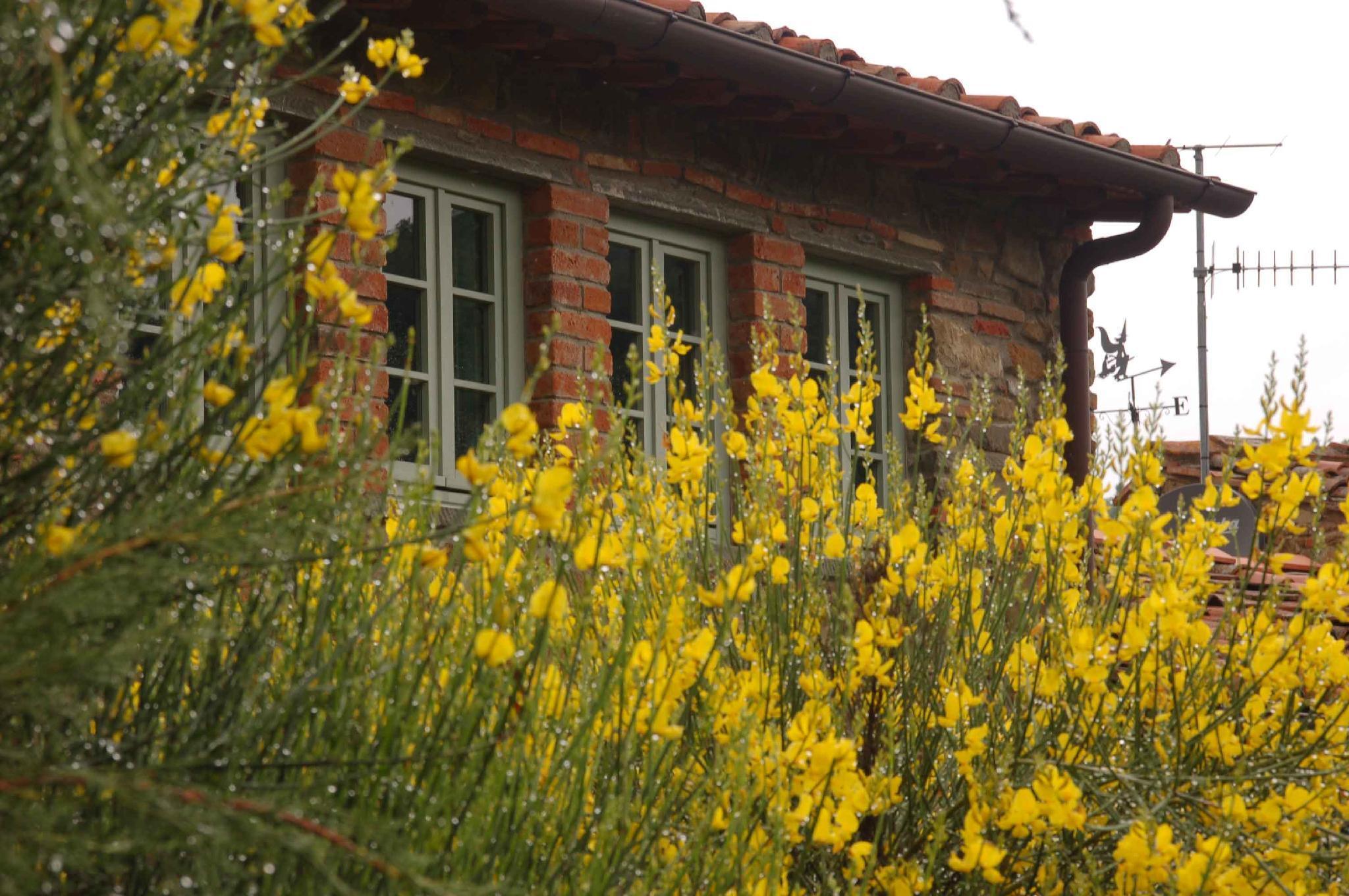Il Capriolo   Your Chianti Destination Tuscany