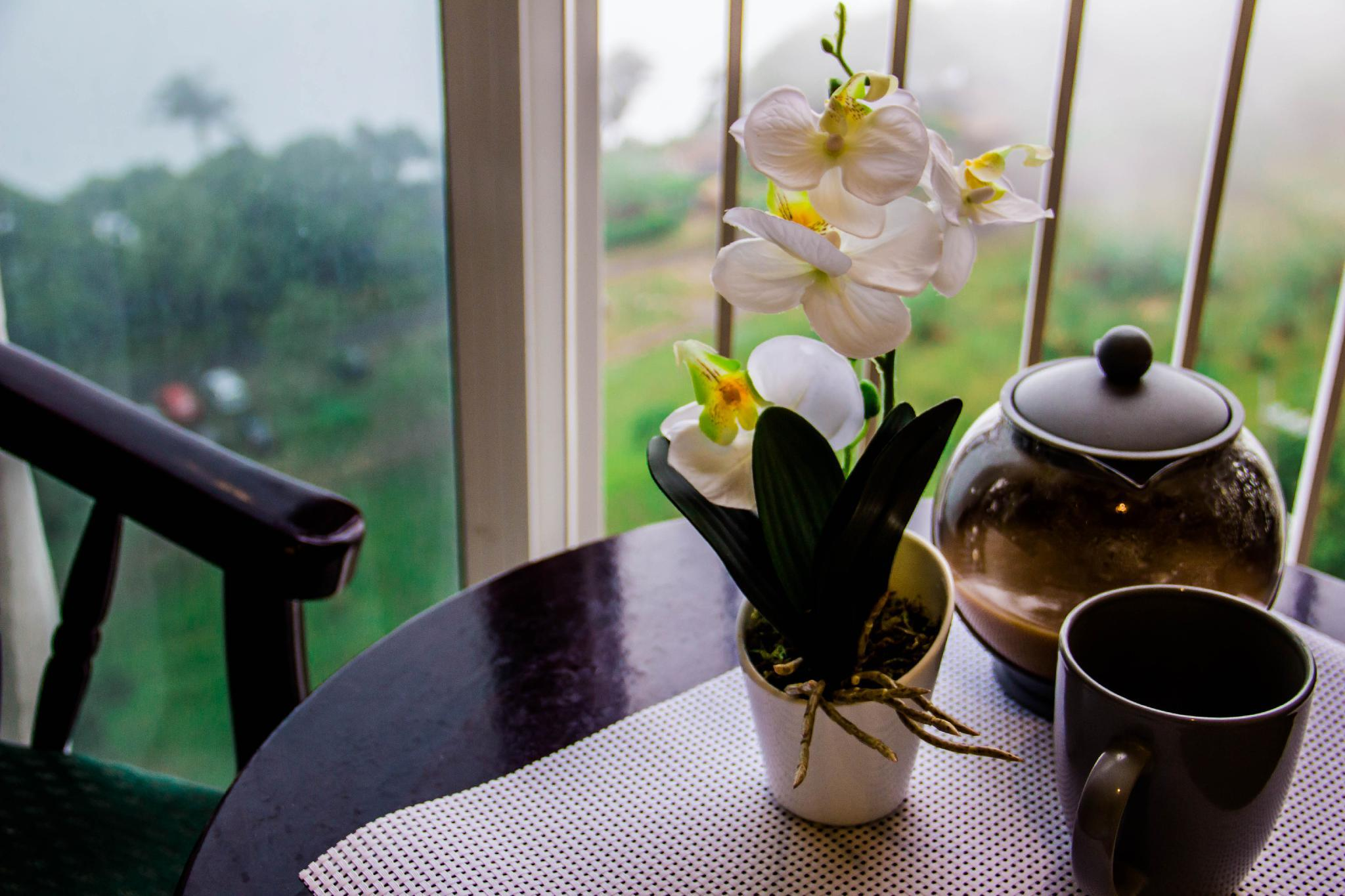 Chill Teal Morning Home | Wind Residences Tagaytay