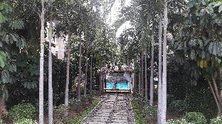 %name Romantic and Exclusive Place a Tropical Dream พัทยา