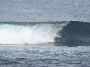 picture 3 of Barrel Spot surfhouse 2