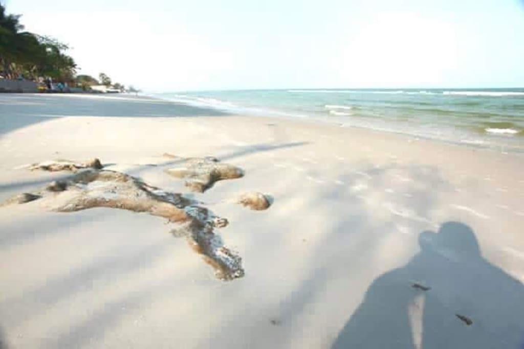 The Trust Hua Hin Near The Beach
