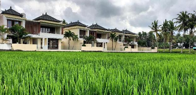 RC Ubud Villa 1
