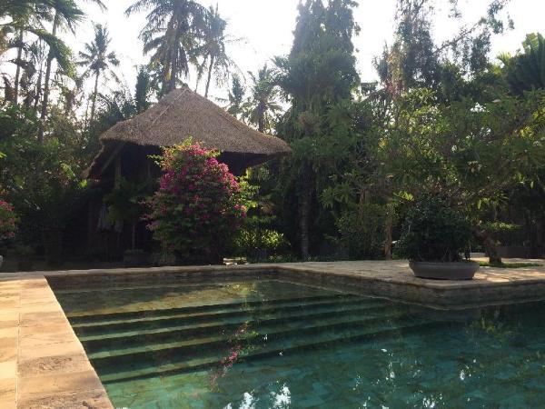 Small paradise near the ricefields Bali