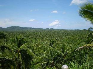 picture 5 of Siargao Catangnan Tiki Homestay