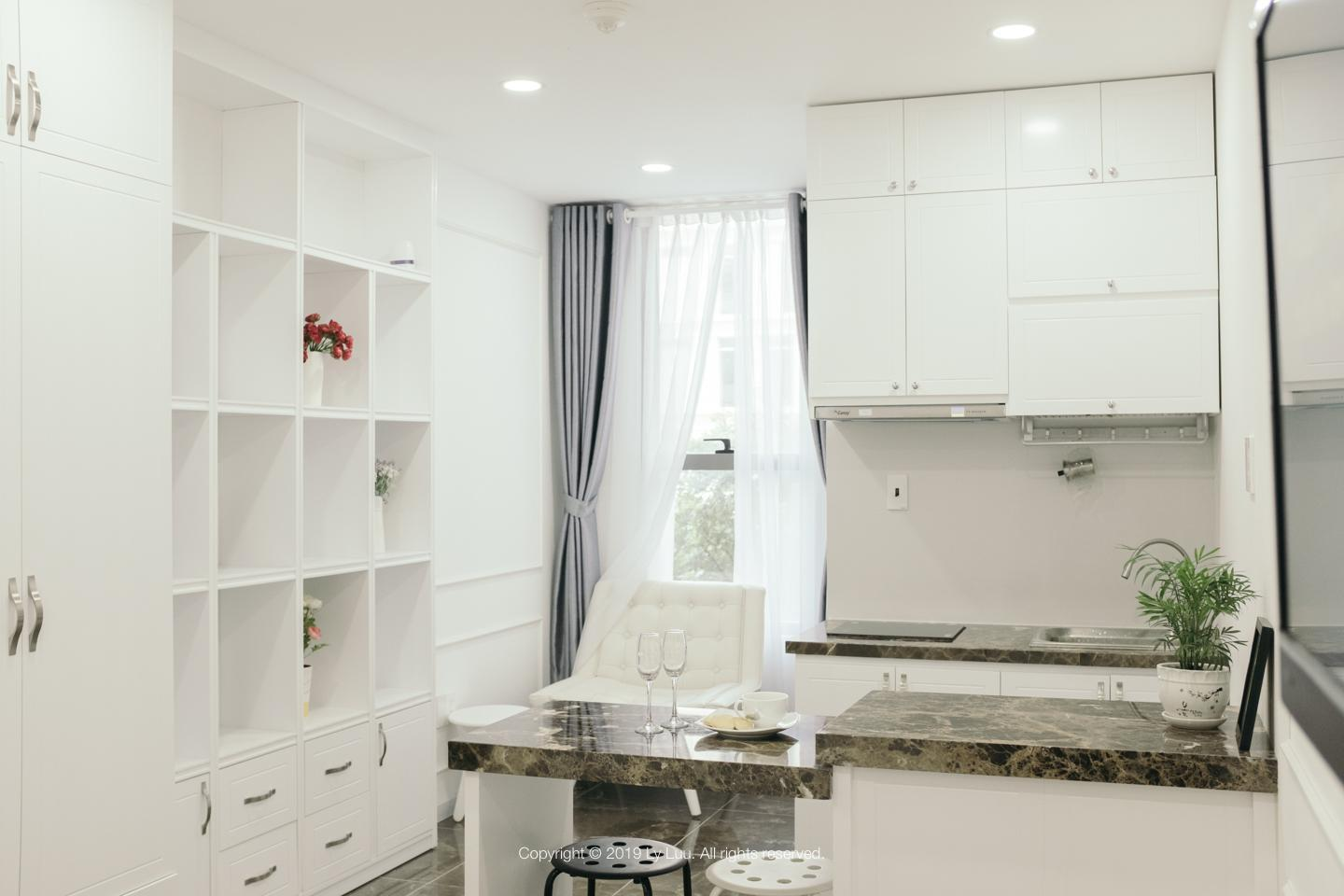Mini WHITE PALACE NEAR AIRPORT FREE GYM AND POOL