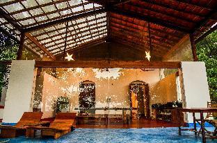 Seclude Falling Cashews  Goa