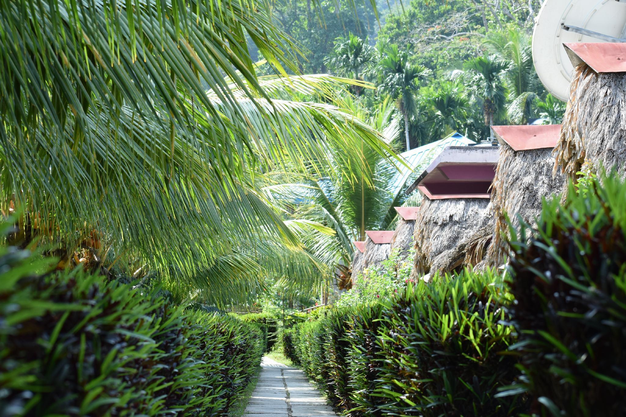 Blue Bird Resort
